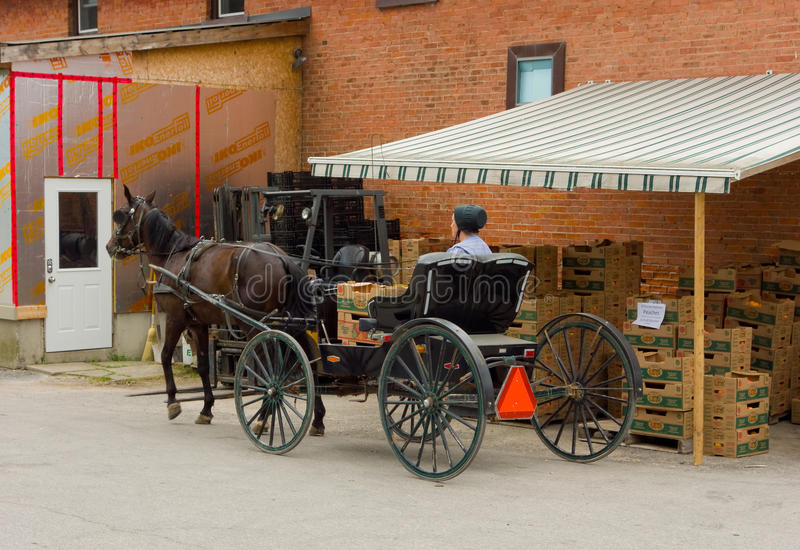 An amish lady waiting to buy fruit at a store in ontario royalty free stock photos