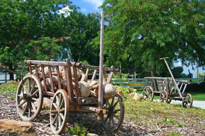 Amish lantgård royaltyfri bild