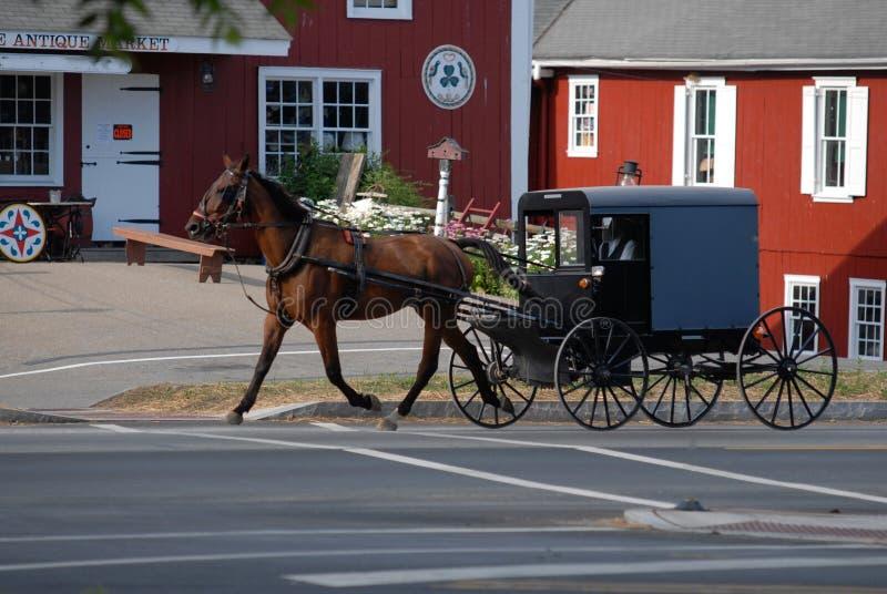 Amish powozik na Pogodnym letnim dniu i ko? zdjęcia royalty free