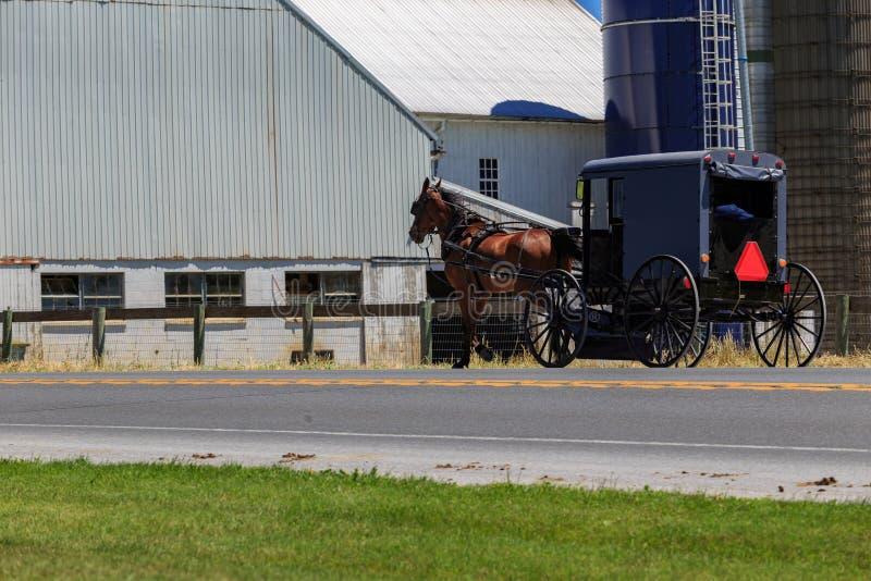 Amish powozik na Wiejskiej jezdni fotografia royalty free