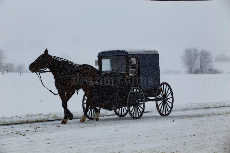 Amish powozik Podróżuje Podczas śnieżycy fotografia royalty free