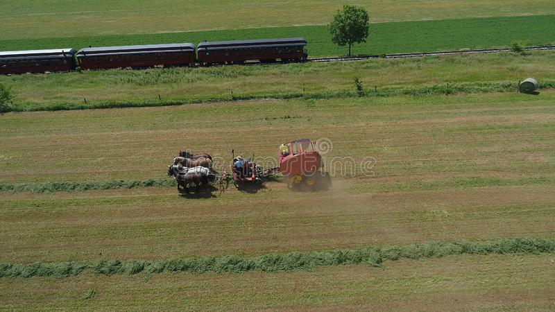 Amish rolnik Zbiera Jego uprawy z 4 koniami i Nowożytnym wyposażeniem zdjęcie stock