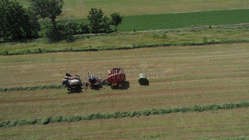 Amish rolnik Zbiera Jego uprawy z 4 koniami i Nowożytnym wyposażeniem obraz stock