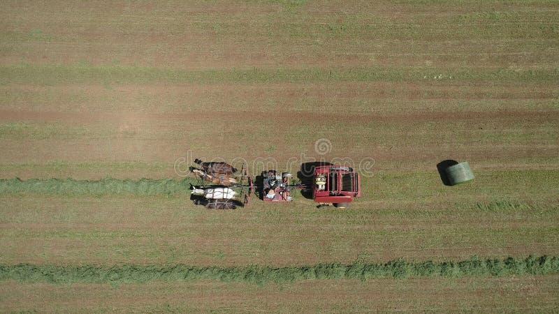 Amish rolnik Zbiera Jego uprawy z 4 koniami i Nowożytnym wyposażeniem zdjęcia stock