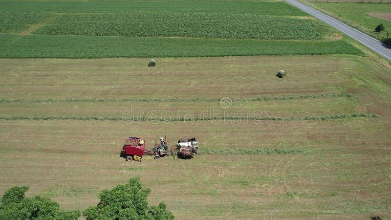 Amish rolnik Zbiera Jego uprawy z 4 koniami i Nowożytnym wyposażeniem zdjęcia royalty free
