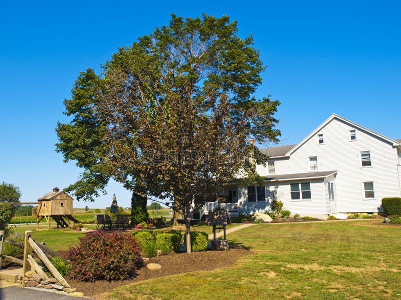 amish rolny Lancaster usa zdjęcie royalty free