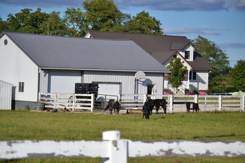Amish Stwarzają ognisko domowe obrazy stock