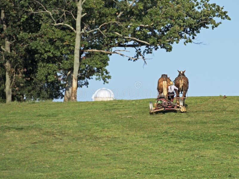 Amish Uprawiać ziemię obraz stock