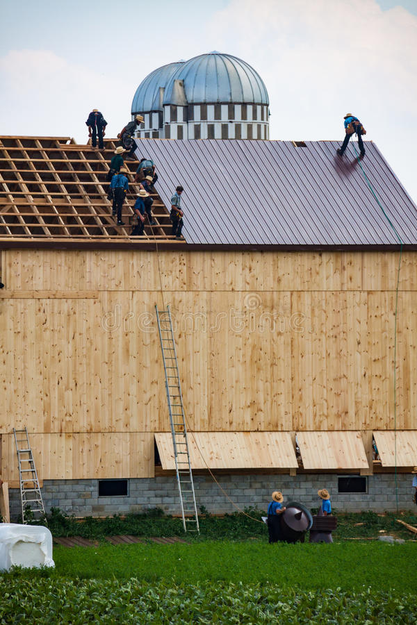 Amish Work on Barn Roof. Wakefield, PA - June 24. 2010: Called a barn raising, Amish farmers construct a barn in a day in Lancaster County stock photos