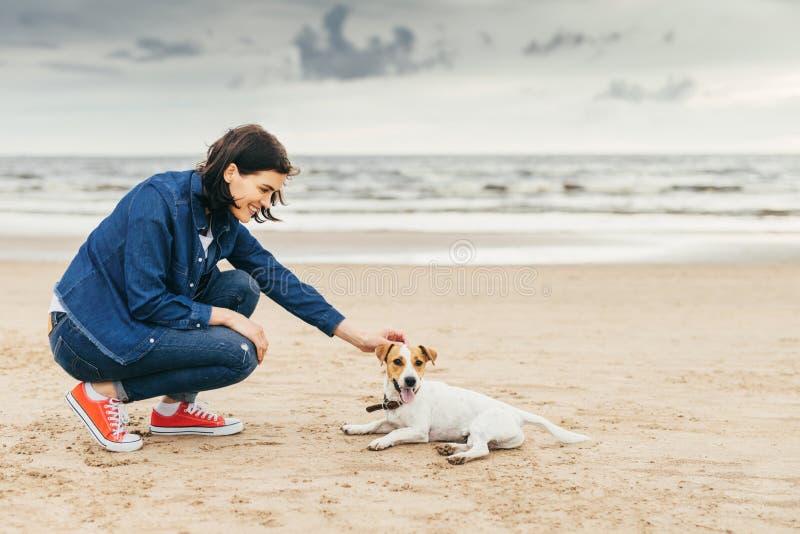 Amistad entre la mujer y el perro imagen de archivo