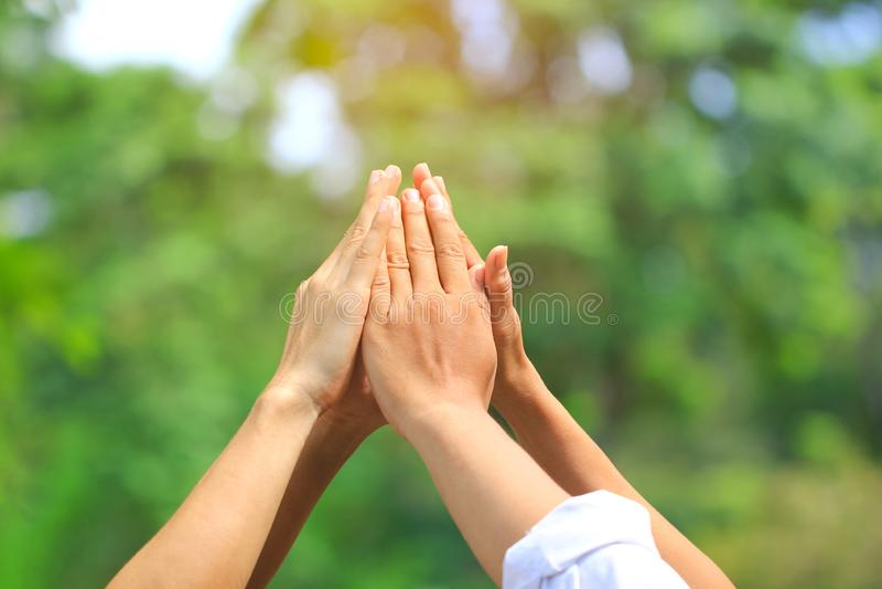 Amitié, personnes de groupe avec la pile de mains montrant l'unité sur le fond vert naturel, rencontrant le concept de travail d' image stock