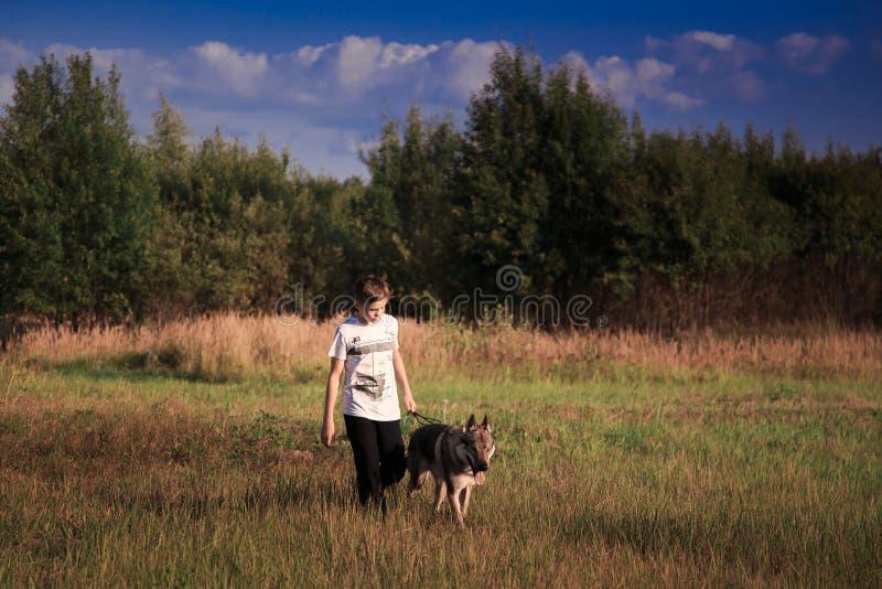 A amizade de um menino e de um animal selvagem a lealdade de um lobo imagens de stock