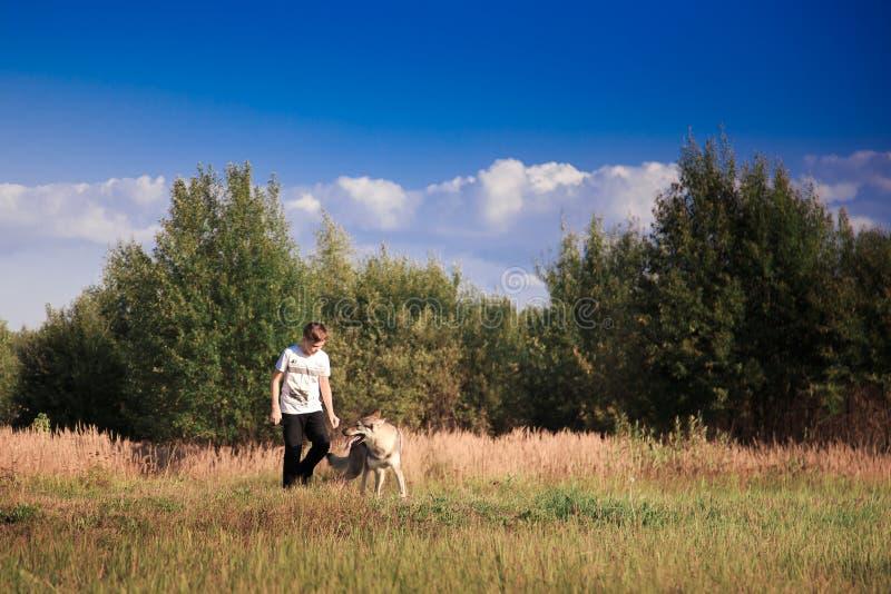 A amizade de um menino e de um animal selvagem a lealdade de um lobo fotos de stock