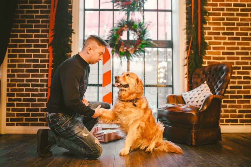 Amizade do homem e do cão Cão desgrenhado de Labrador da raça do golden retriever do animal de estimação Um homem treina, ensina  imagens de stock royalty free