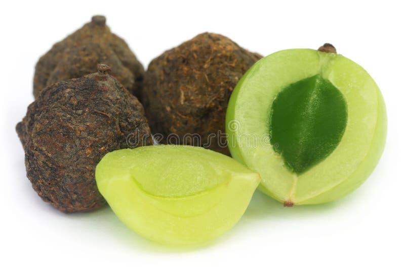 Amla-Früchte - getrocknet und grün stockbild