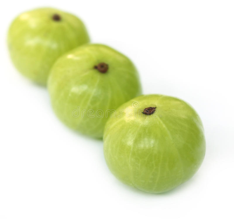 Download Amla Fruits With Selective Focus Stock Image - Image: 20643785
