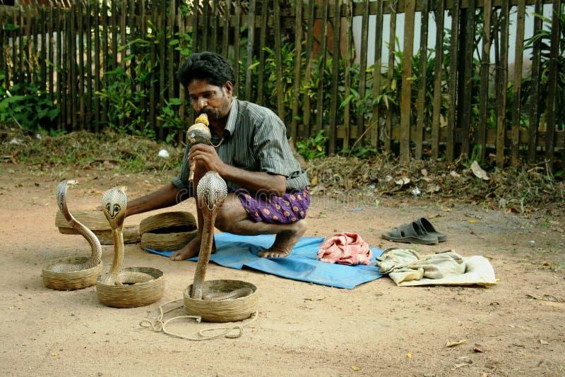 Ammaliatore di serpente indiano fotografia stock libera da diritti