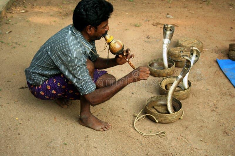 Ammaliatore di serpente indiano fotografie stock libere da diritti