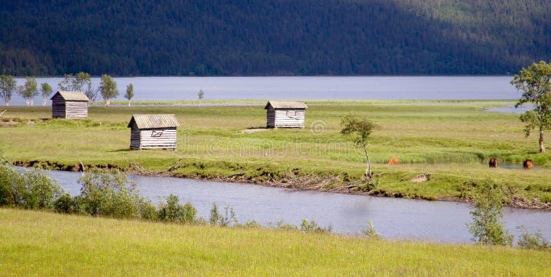 ammarnas bud łąkowa lato wioska fotografia stock