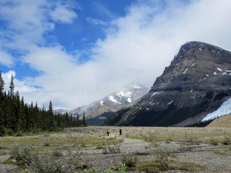 Ammirare la vista del lago berg e del supporto Robson Glacier fotografia stock libera da diritti