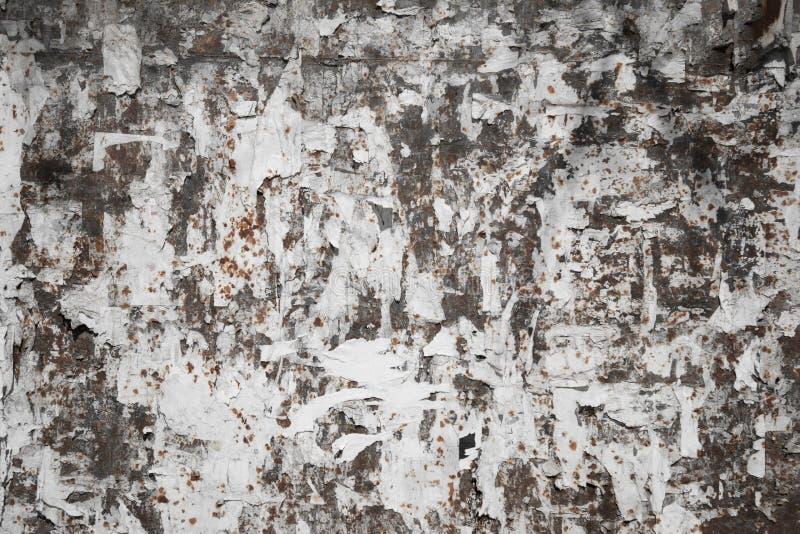Ammuffito carta macchiata vecchio lerciume sulla parete immagini stock