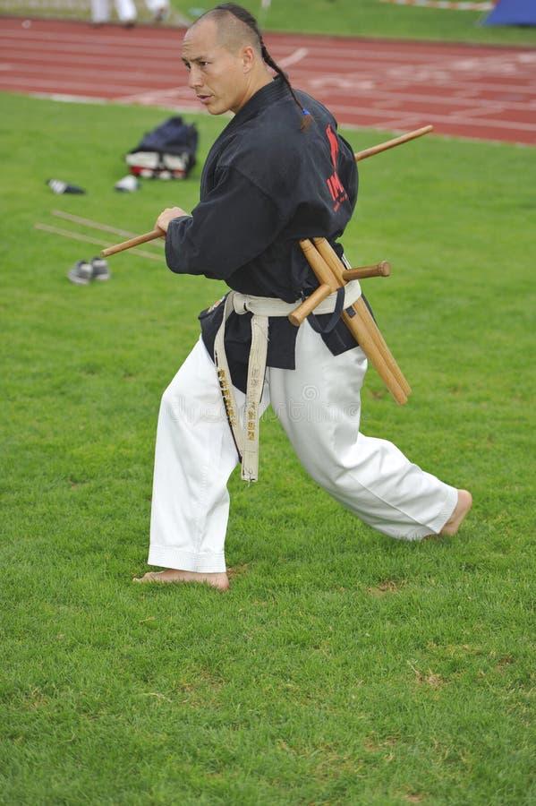 Amo Benj Lee del arte marcial con BO y Tonfa imagenes de archivo
