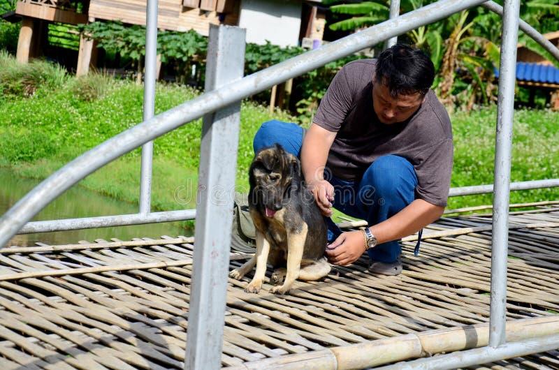 Amo d'aiuto di movimento dell'uomo tailandese dalla parte posteriore del cane fotografie stock