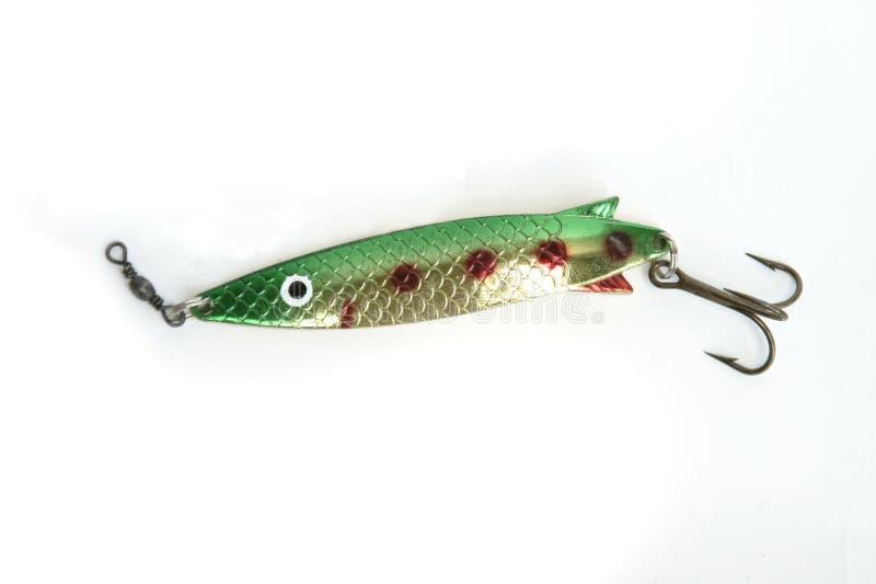 Amo di pesci isolato fotografia stock libera da diritti