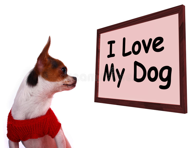 Amo il mio segno del cane che mostra l'amicizia adorabile amorosa immagine stock