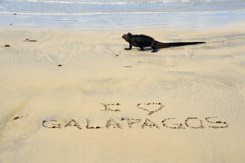 Amo las Islas Galápagos imagen de archivo
