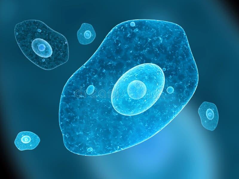 Amoeba. On blue background. 3d render