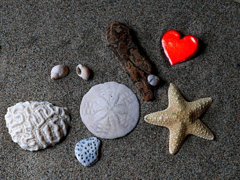 Amonst del corazón del ` s de la tarjeta del día de San Valentín otros tesoros de la playa imagen de archivo