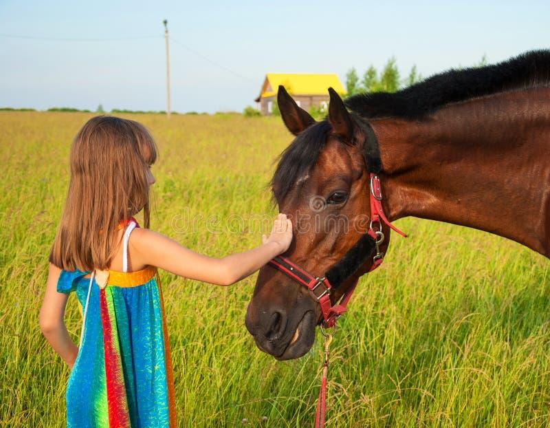 Amor aos animais foto de stock royalty free