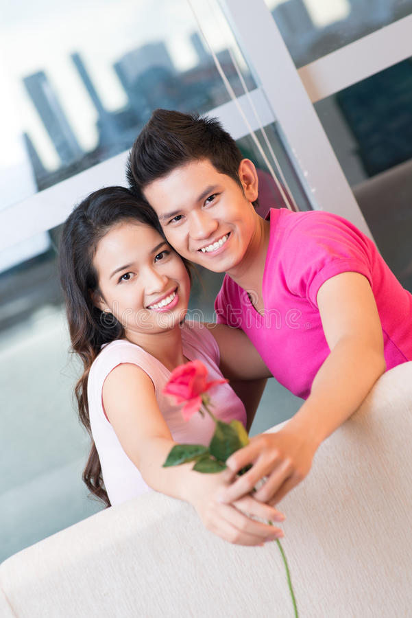Amor cor-de-rosa do vermelho fotografia de stock