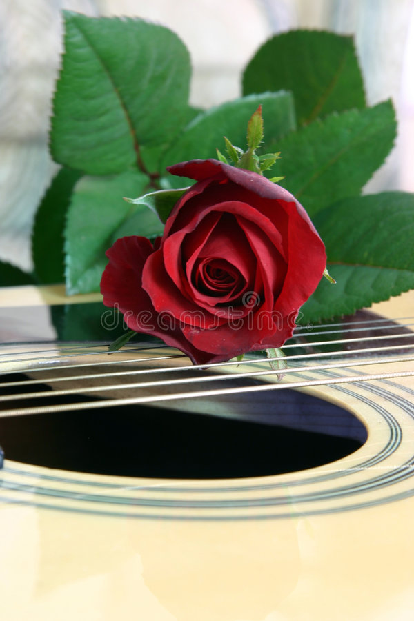 Amor da música 3 imagens de stock