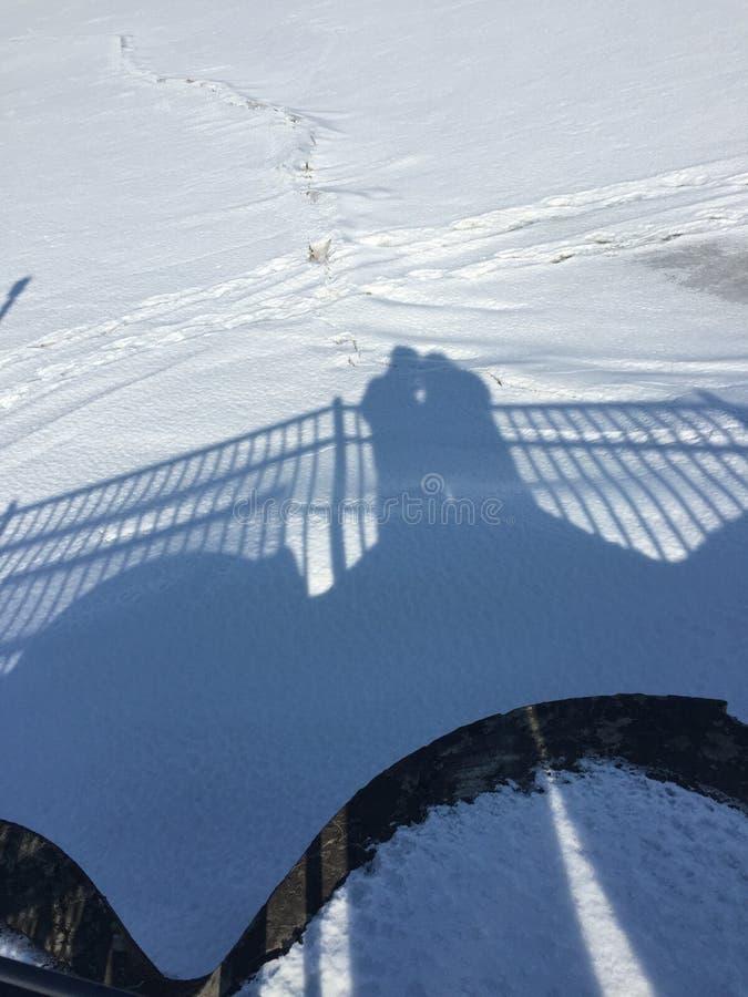 Amor da sombra fotografia de stock