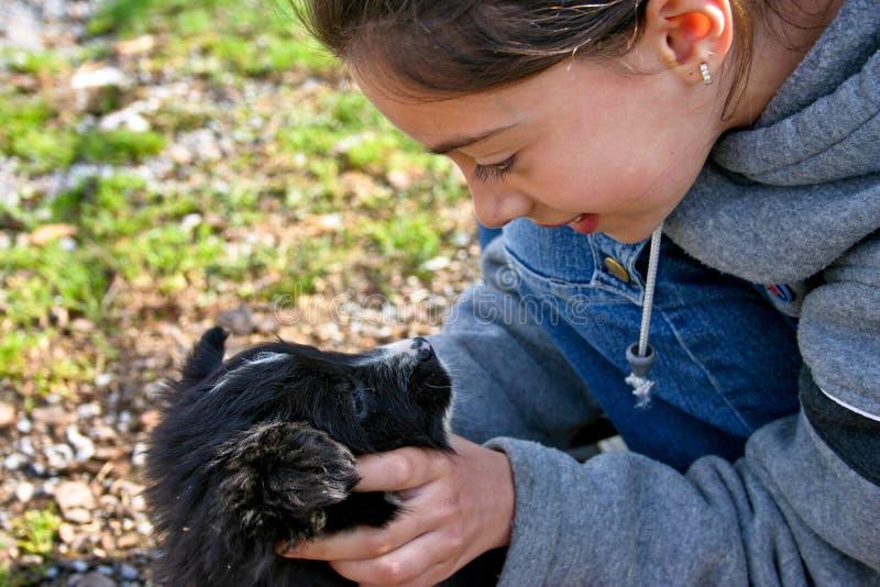 Amor de filhote de cachorro fotografia de stock royalty free