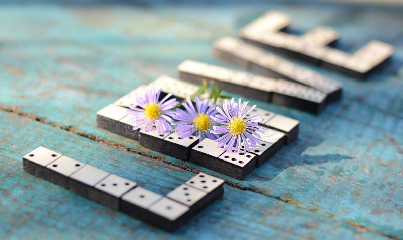Amor de la palabra de dominós de madera imagen de archivo libre de regalías