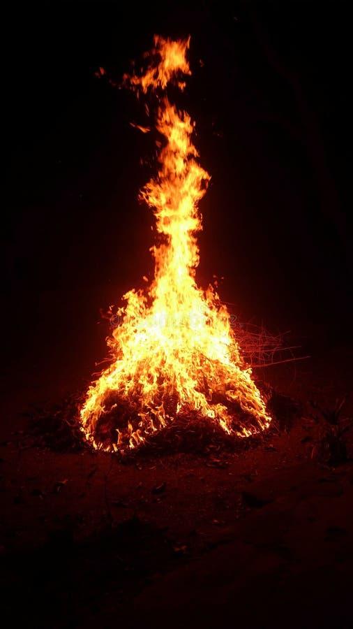 Amor del fuego foto de archivo