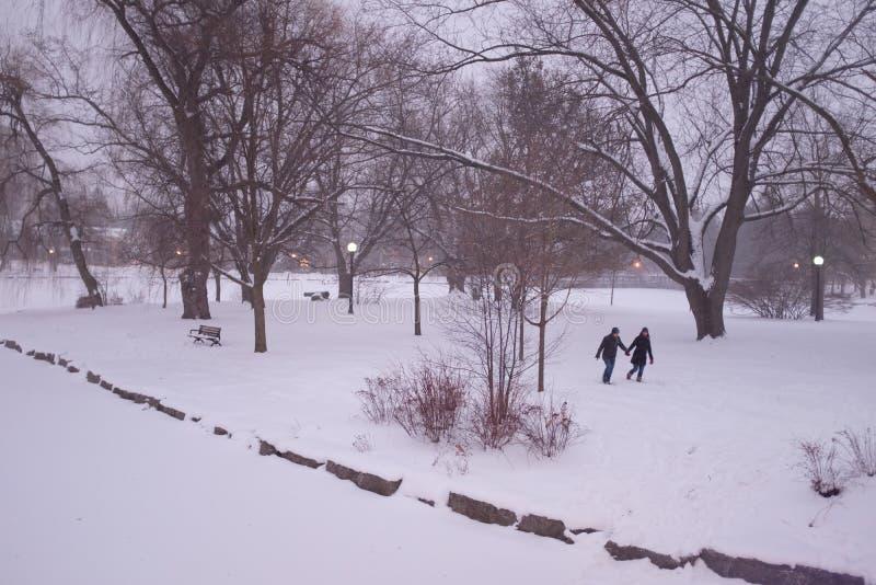 Amor do inverno imagens de stock