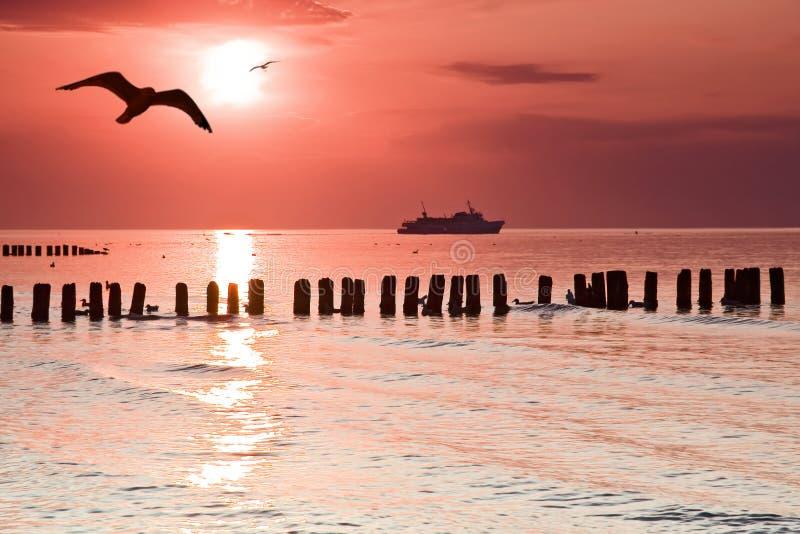 Amor en la playa. imagenes de archivo