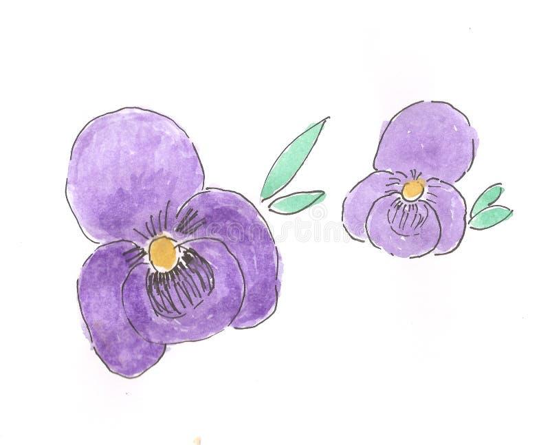 Amor perfeito violeta da aquarela imagens de stock royalty free