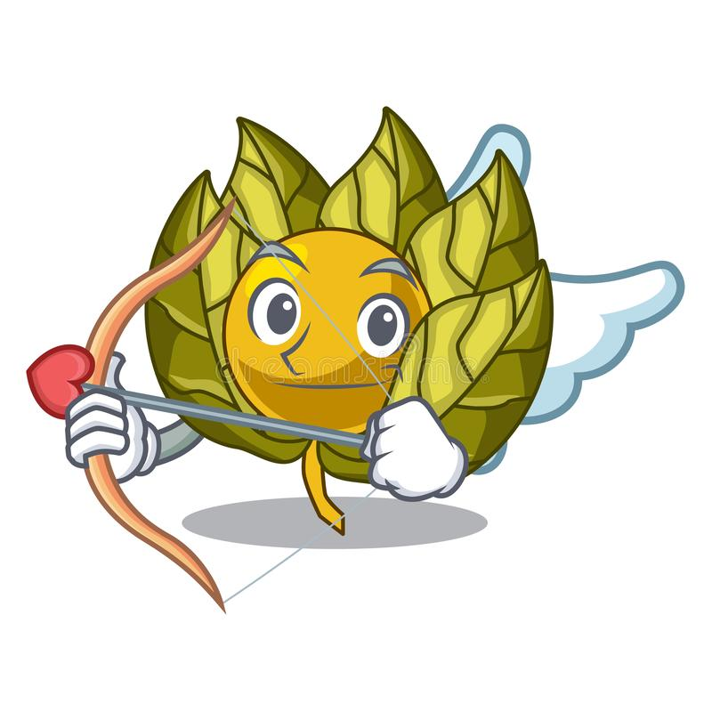 Amor Physalisfrucht in einer Karikaturschüssel vektor abbildung