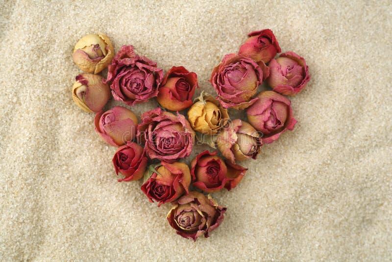 Amor sin fin Corazón de rosas rojas en la arena fotos de archivo