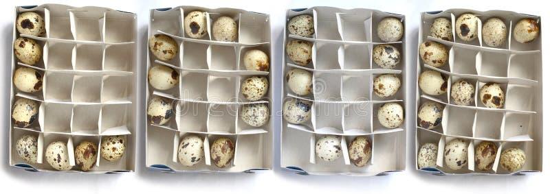 Amor y huevos fotografía de archivo