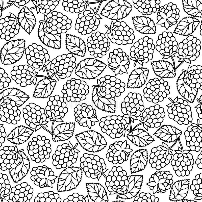 Amora-preta da framboesa com o pettern sem emenda das folhas ilustração do vetor