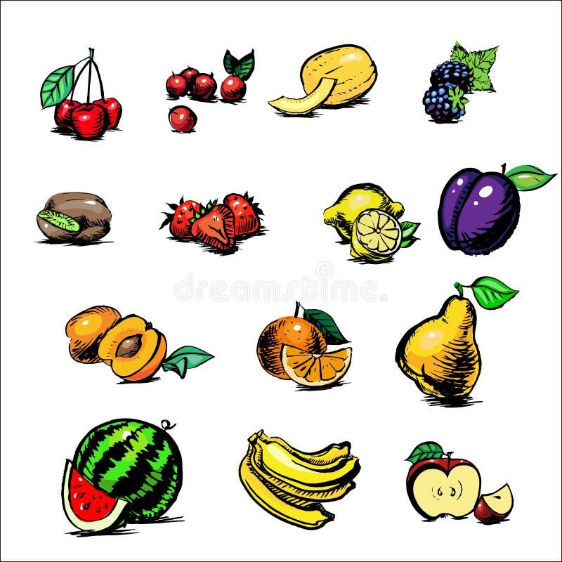Amora-preta de Apple, quivi da banana da melancia do abricó, laranja, cantalupo, cerejas, morangos, kgrusha, limão, fruto e ovozi ilustração stock