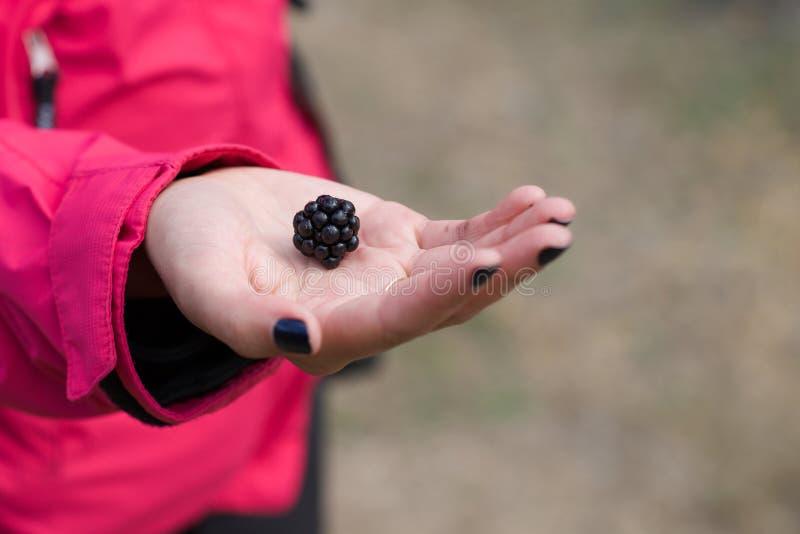 Amora-preta grande na mão da menina imagens de stock royalty free