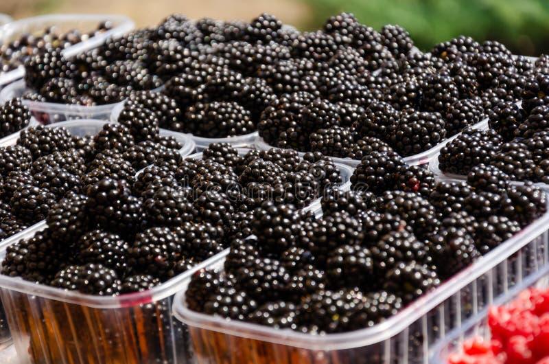 Amoras-pretas suculentas maduras em uns recipientes plásticos na tenda do mercado Bagas orgânicas frescas do ecofarm foto de stock
