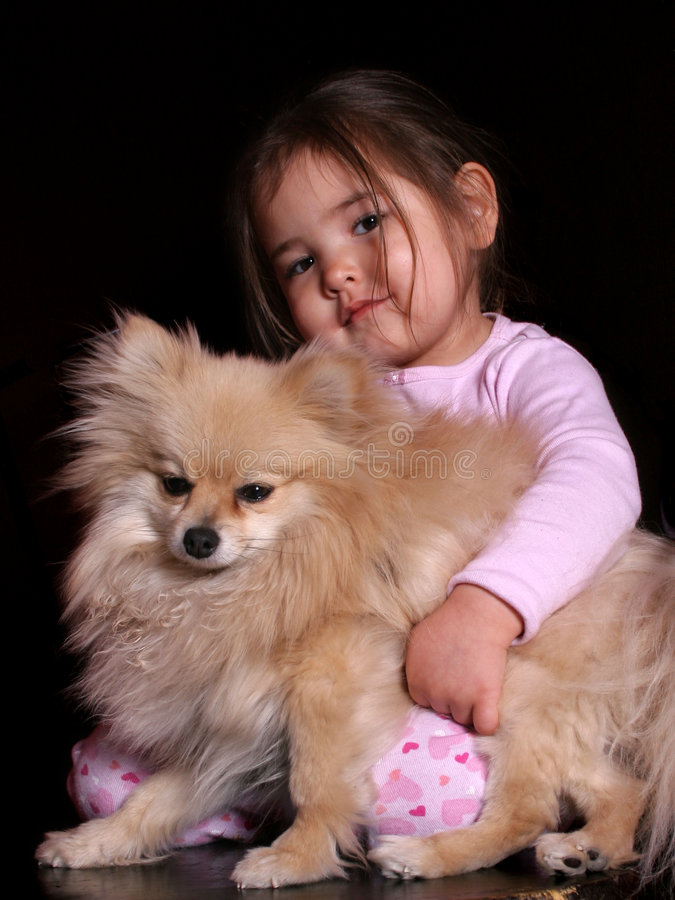 Amore del cucciolo fotografie stock